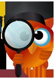 Focus Owl
